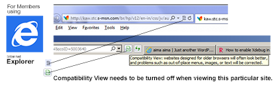 Internet Explorer Compatibility View