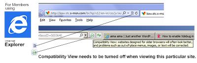 Internet Explorer Compatibility View